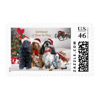 Navidad de los perros de aguas de cocker una época