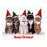 """Navidad de Meowy!"" Gatos Postal"