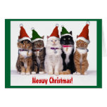 """""""Navidad de Meowy!"""" Gatos Tarjetas"""