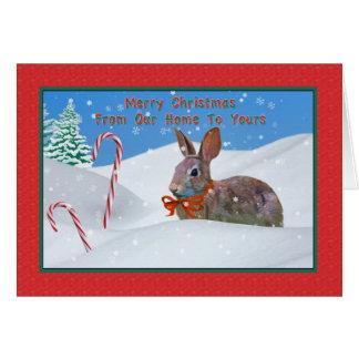 Navidad, de nuestro hogar, conejo, nieve, bastón d tarjeton