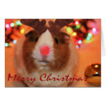 Navidad de Rednose Felicitaciones