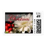 Navidad de USPS que saluda el sello 2014