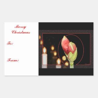 Navidad del Amaryllis Pegatina Rectangular