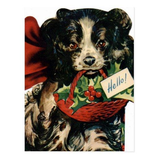 Navidad del border collie postales