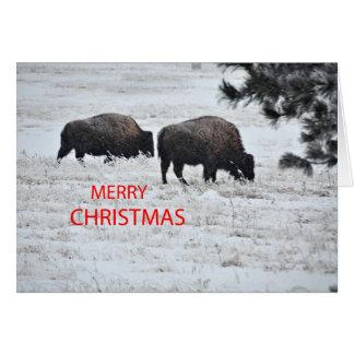 Navidad del búfalo tarjeton