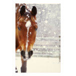 Navidad del caballo del invierno papelería personalizada