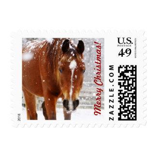 Navidad del caballo del invierno franqueo