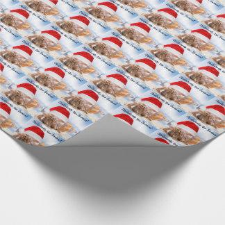 Navidad del cangrejo de ermitaño pequeño papel de regalo