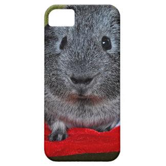 Navidad del conejillo de Indias Funda Para iPhone SE/5/5s