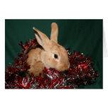 Navidad del conejito felicitacion