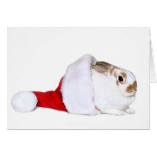 Navidad del conejito tarjeta