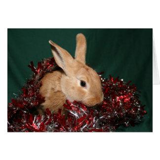 Navidad del conejito tarjeta de felicitación