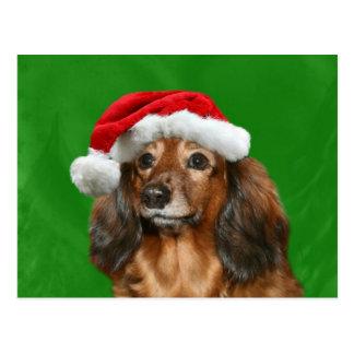 Navidad del Dachshund Tarjetas Postales
