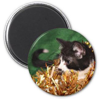 Navidad del gatito del smoking iman de nevera