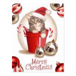 Navidad del gatito del Tabby Postales