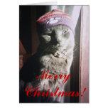 Navidad del gatito tarjetas