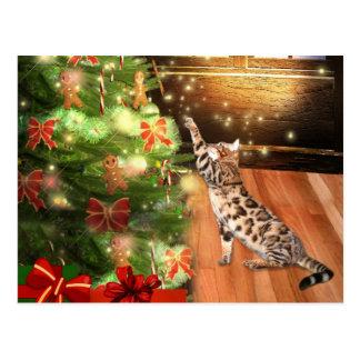 Navidad del gato de Bengala Postal