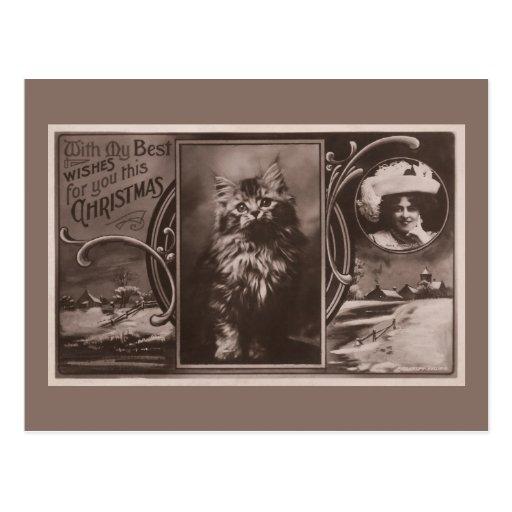 Navidad del gato que saluda de actriz famosa tarjeta postal