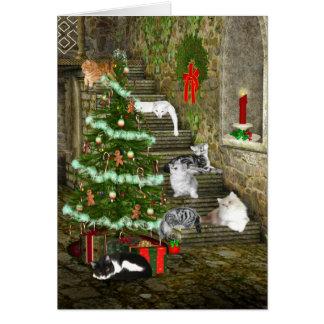 Navidad del gato tarjeta de felicitación