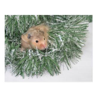 Navidad del hámster postales