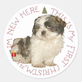 Navidad del perrito de Shih Tzu primer Pegatina Redonda