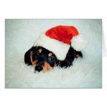 Navidad del perrito del Dachshund Tarjeton