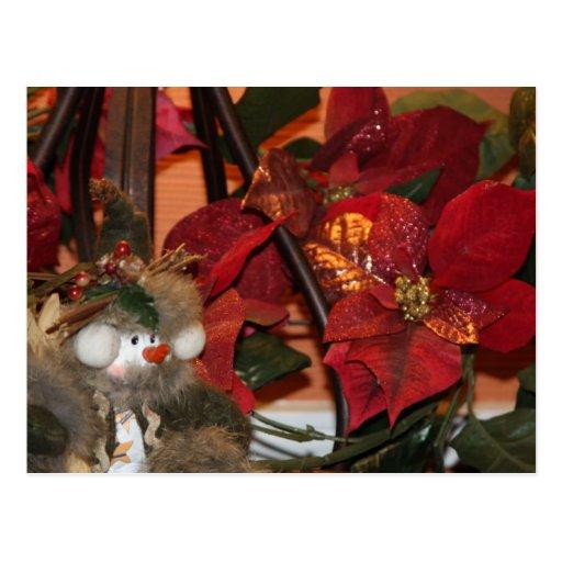 Navidad del Poinsettia Tarjeta Postal