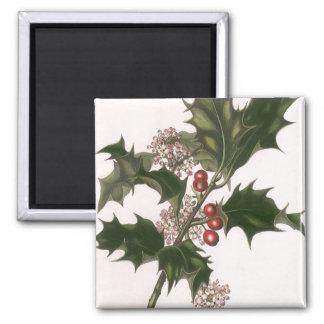 Navidad del vintage, planta del acebo con las imán cuadrado