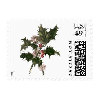 Navidad del vintage, planta verde del acebo con sello