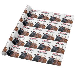 Navidad divertido de Mooey de las vacas Papel De Regalo