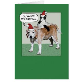 Navidad divertido del gato y del perro tarjeta de felicitación