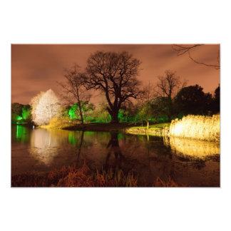 Navidad en los jardines de Kew Arte Con Fotos