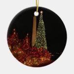 Navidad en Washington DC Ornamento De Navidad