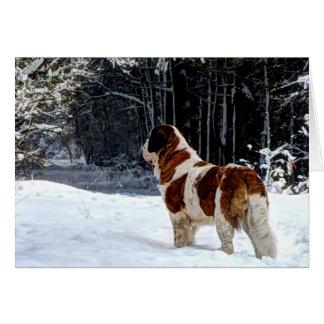 Navidad fotográfico de la nieve de St Bernard que Tarjeta De Felicitación