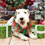 Navidad - fox terrier - Annie Escultura Fotográfica