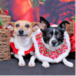 Navidad - fox terrier - Sadie y Natalie Escultura Fotografica