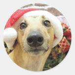 Navidad - galgo - Pena Pegatinas Redondas