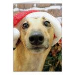 Navidad - galgo - Pena Tarjeta Pequeña