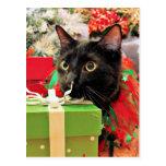 Navidad - gato - Bentley Postales