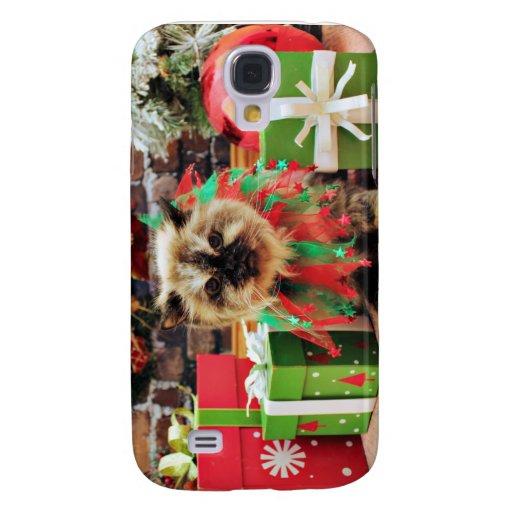 Navidad - gato Himalayan - pensamiento