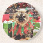 Navidad - gato Himalayan - pensamiento Posavasos Diseño
