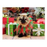Navidad - gato Himalayan - pensamiento Postal