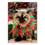 Navidad - gato Himalayan - pensamiento Tarjeta De Felicitación