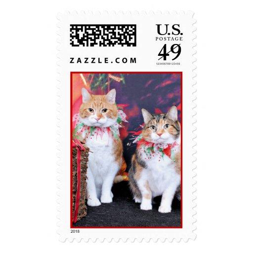 Navidad - gato - mantequilla y guarro franqueo