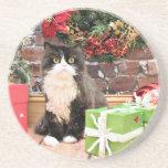 Navidad - gato - persa - George Posavaso Para Bebida