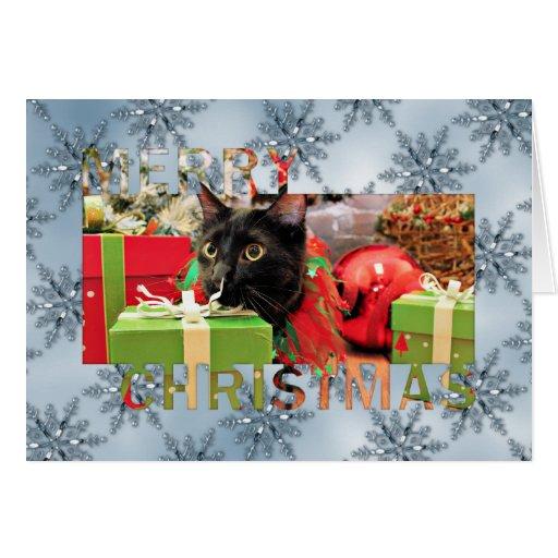Navidad - gato - Schmahl Tarjeton