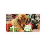 Navidad - golden retriever - Addison Etiquetas De Dirección