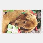 Navidad - golden retriever - Addison Etiquetas