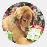 Navidad - golden retriever - Addison Pegatina Redonda