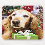 Navidad - golden retriever - Bailey Alfombrillas De Raton